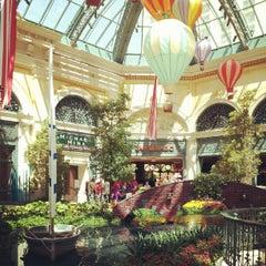 Photo taken at Bellagio Conservatory & Botanical Gardens by Jim G. on 8/2/2012