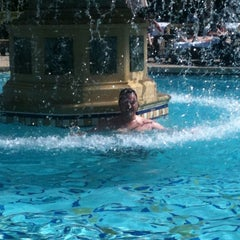 Photo taken at The Pool At Bellagio by Jennifer D. on 9/30/2011