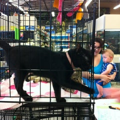 Photo taken at PetSmart by Mike E. on 6/9/2012