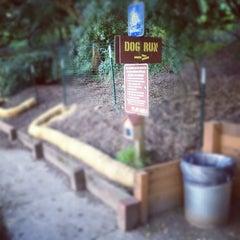 Photo taken at Buena Vista Park Dog Run by Mark H. on 2/17/2012