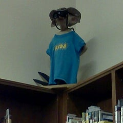 Photo taken at Waterville Public Library by Rachel G. on 6/17/2012