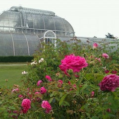 Photo taken at Palm House by Myra S. on 8/15/2011