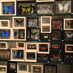 Photo taken at The Evolution Store by Jenna M. on 3/3/2012