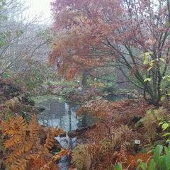 Photo taken at Botanische Tuin De Kruidhof by Peter B. on 11/21/2011