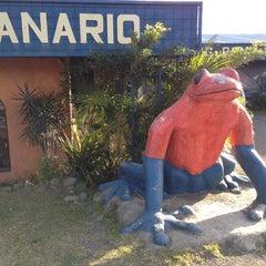 Photo taken at Frog Pond of Monteverde by Efrat Z. on 12/22/2011