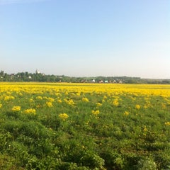 Photo taken at Countryside by Петр А. on 5/16/2012