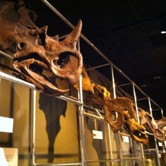 Photo taken at Museum of Science by Nathan C. on 7/16/2011