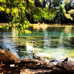 Photo taken at Barton Springs Pedestrian Bridge by Laurence N. on 9/2/2012