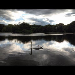 Photo taken at Leazes Park by Rosalynn L. on 6/18/2012