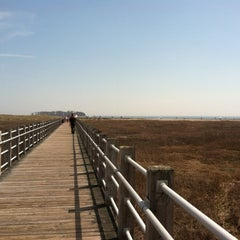 Photo taken at Silver Sands State Park by Inara C. on 4/16/2012