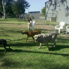Photo taken at Costa Mesa Bark Park by Lucia O. on 6/21/2012