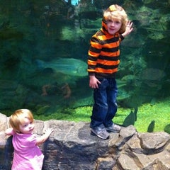Photo taken at Bass Pro Shops by Johnny A. on 3/11/2012