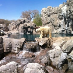 Photo taken at ABQ BioPark Zoo by Leif G. on 4/3/2011
