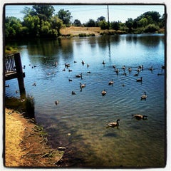 Photo taken at William Pond Recreation Area by 🍉🌽🍍Tay D. on 7/8/2012