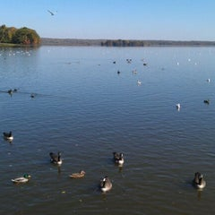 Photo taken at Spillway at Pymatuming State Park by Karen S. on 10/9/2011