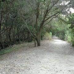 Photo taken at Weedon Island Preserve by Amanda T. on 1/18/2012