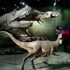 Photo taken at Royal Tyrrell Museum of Paleontology by Jon L. on 9/3/2011