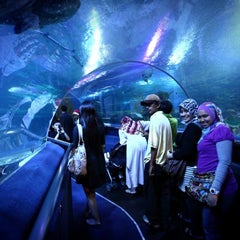 Photo taken at Aquaria KLCC by fghfgh f. on 8/27/2012