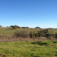 Photo taken at Avio Vineyards by Ed T. on 3/3/2012