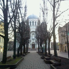 Photo taken at Laisvės alėja | Liberty Avenue | Аллея Свободы by Ömar P. on 12/30/2011