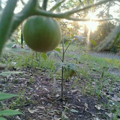 Photo taken at Springforest Permaculture Project by Jæ E. on 4/24/2012
