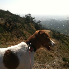 Photo taken at Griffith Park Trail by Ty F. on 2/25/2012