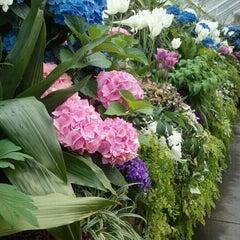 Photo taken at Volunteer Park Conservatory by Kelly S. on 4/18/2012