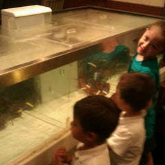 Photo taken at Red Lobster by Stephanie E. on 10/1/2011