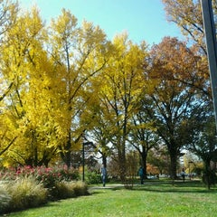 Photo taken at Ekstrom Library by tata h. on 11/8/2011
