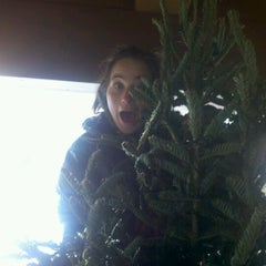 Photo taken at The Top Of A Christmas Tree by Natalie A. on 12/15/2011