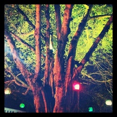 Photo taken at Dada by Chelsea W. on 5/13/2012