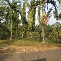Photo taken at Taman Buah Mekarsari by ANSYA PUTRI on 7/1/2012