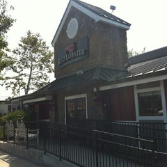 Photo taken at Red Lobster by Edgard E. on 11/16/2011