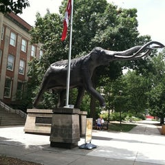 Photo taken at Morrill Hall by Kelly C. on 8/4/2011
