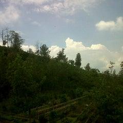 Photo taken at Ciseureuh Tea Plantation by Icup Supriadi S. on 5/16/2012