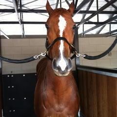 Photo taken at Eagle Farm Racecourse by Gary C. on 5/2/2012