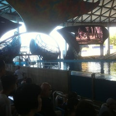 Photo taken at Shamu Theater by Eric F. on 6/1/2012