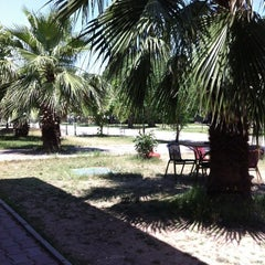 Photo taken at Ege Üniversitesi Konservatuvarı by Ziya Y. on 6/18/2012