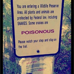 Photo taken at Spanish Pond at the Timucuan Preserve by John B. on 10/11/2011