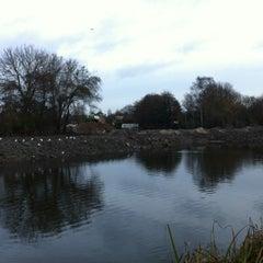 Photo taken at Voormalige Panta Rhei by Rem on 12/11/2011