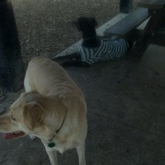 Photo taken at Robert A. Stuart Dog Park by Nikki C. on 3/15/2012