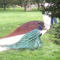 Photo taken at Grounds For Sculpture by Eve I. on 5/27/2012