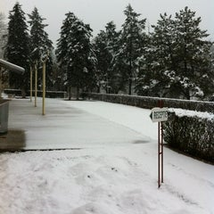 Photo taken at Clubul Floreasca by Costi D. on 1/21/2012