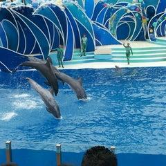 Photo taken at Dolphin Stadium by Jen H. on 8/5/2012
