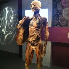 Photo taken at BODIES...The Exhibition by Meghan F. on 8/25/2012