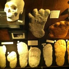 Photo taken at Museum Of The Weird by Scott N. on 4/15/2012