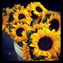 Photo taken at St. Paul Farmers' Market by Ruslana W. on 8/25/2012