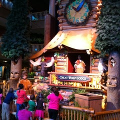 Photo taken at Great Wolf Lodge by Steve S. on 5/8/2011