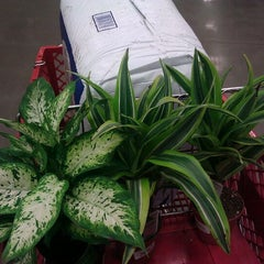 Photo taken at Lowe's Home Improvement by Aaron H. on 1/6/2012