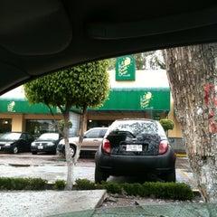 Photo taken at Los Bisquets Bisquets Obregón by Kermit h. on 3/29/2012